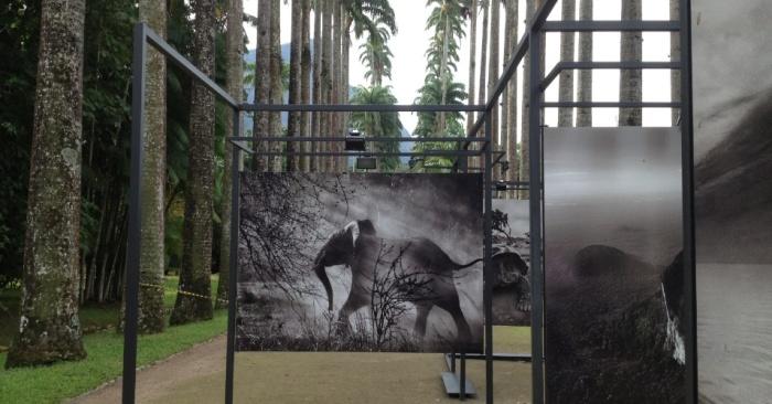 Exposição GENESIS de Sebastião Salgado por Bianca Duarte (Blog Mean Fashion) 01